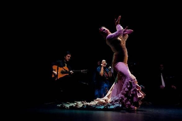 bienel de flamenco-181658