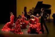 Image Flamenco Dancers