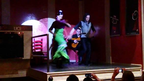 liceo flamenco