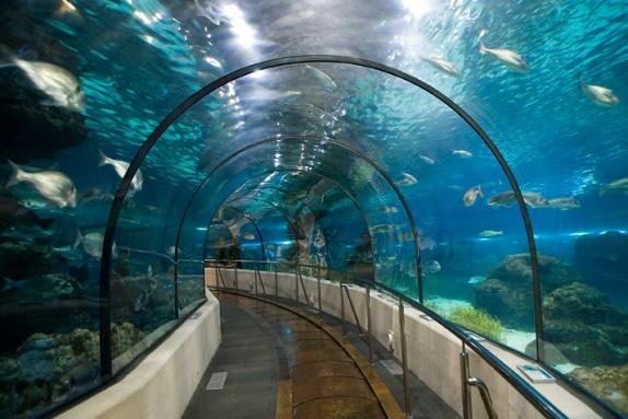 aquarium-nautica
