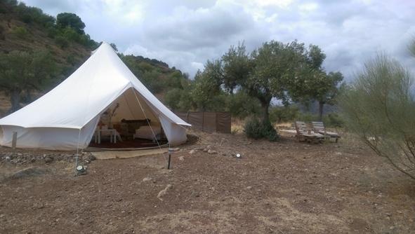 6 meter tent